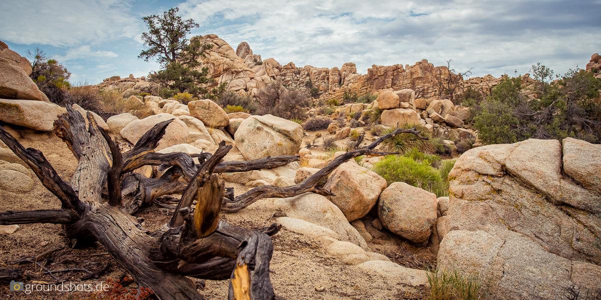 Der Hidden Valley Trail im Joshua Tree Nationalpark